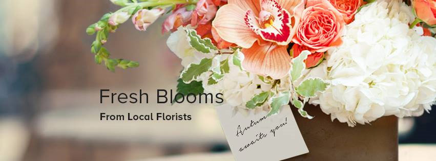 https://www.facebook.com/BloomNation