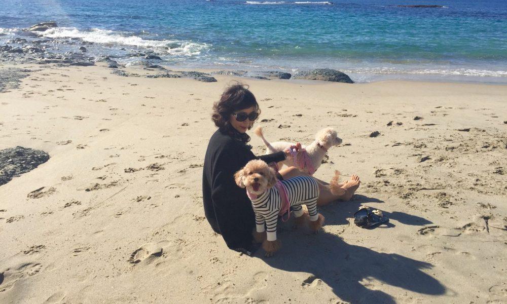 ec3789df319 Meet Liz Park of Marina West Swim in Fashion District - Voyage LA ...