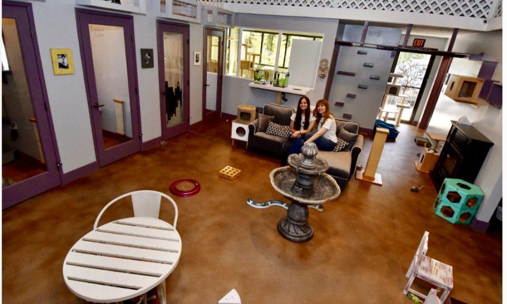 """toluca lake single girls Ben hollingsworth, co-star of """"code black,"""" shelled out $124 million for a brand-new, single-story residence in toluca lake, calif."""