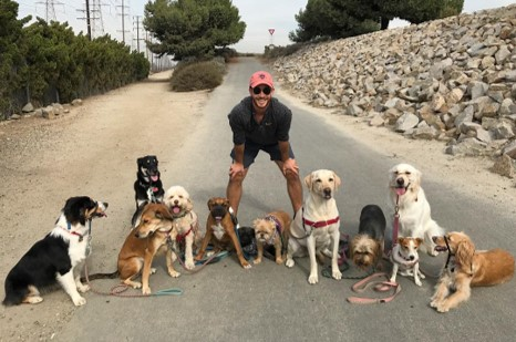 Meet Michael Bass of OC Pup Scouts in Orange County - Voyage